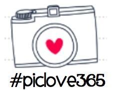 #piclove365